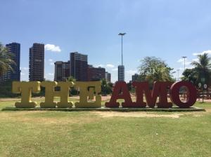 THE AMO Teresina