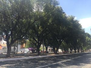 Centro de Teresina