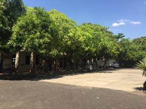 Central de Artesanato Mestre Dezinho, na Praça Pedro II 3